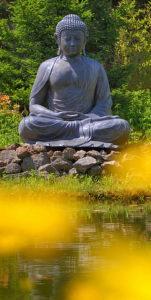 Bouddha assis en lotus, zazen la méditation zen